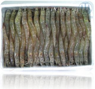 Raw Hoso Vannamei Shrimp