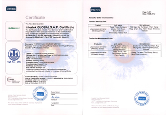 Global gap certificate
